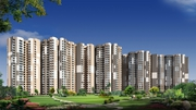 Gaur City | Ready To Move Flats | Noida Extension,  8447146146