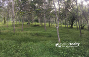 1 acre 28 cent  land for sale in Perikkalloor near pulpally.