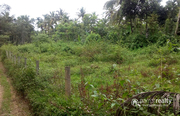 23cent house plot in 2th mile @ 23lakh. Wayanad