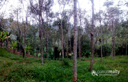 Well 2 acre with independent house in Kattimoola @ 44 lakh. Wayanad