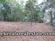 Residential Plot Sale near kattakda