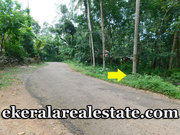 Nedumangad  low price land for sale