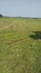 On Road Site for Sale at Cheyyar to Tiruvannamalai National Highways