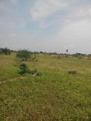 Agri Land For Sale Near Trichy