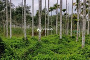 2.30 acre Agriculture land for sale near Varadoor…..