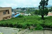 10 cents Residential Plot For Sale in Kotagiri