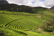 Property for Sale in Ooty with Amazing View