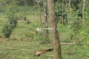 2 acre land for sale near Valad @ 13 lakh/acre