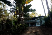 2.15 acre Agriculture land  for sale  near Padichira @ 60 lakh…..
