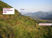 Palampur (HP) – 5.3 Kanal land for sale